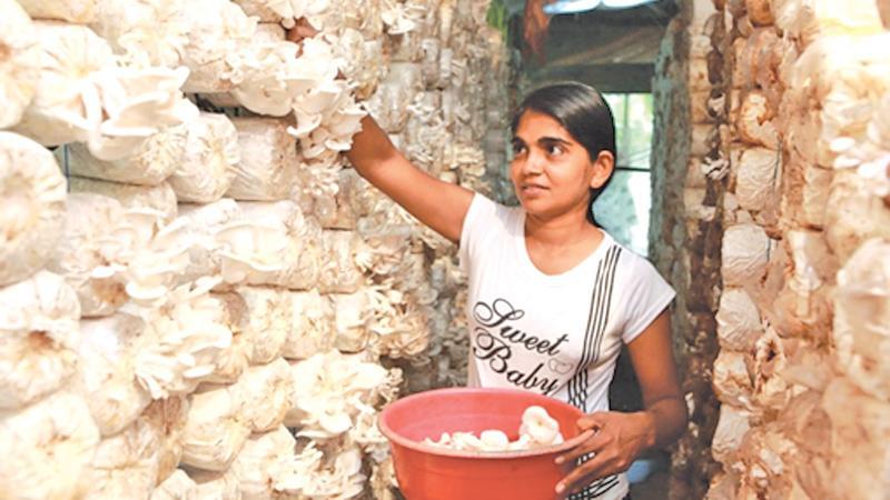 A woman at work. Source: http://blogs.worldbank.org/jobs/psd/young-women-and-work-international-womens-day