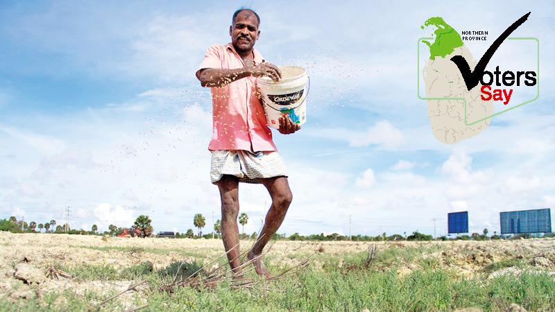 A farmer sowing the field with renewed hope of the election.