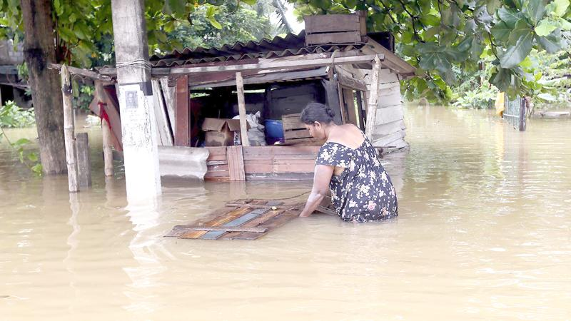 The monsoon rains which lashed the country during the past few days has claimed at least six lives and affected thousands of families. Here a woman in Mabima, Kaduwela tries to turn out a raft to tide over the situation. Pic: Sulochana Gamage